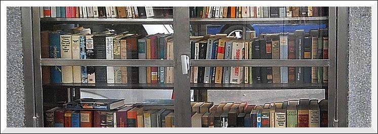 Bücherkasten am Feldbergplatz