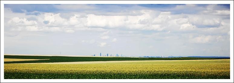 Frankfurter Skyline, von der Laubenheimer Höhe