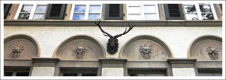 Geweih als Schmuck am Haus in der Ritterstraße