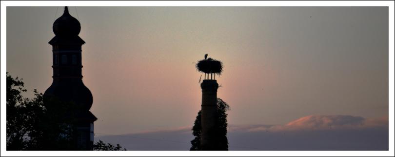 Das Foto zeigt ein Storchennest auf einem Schornstein