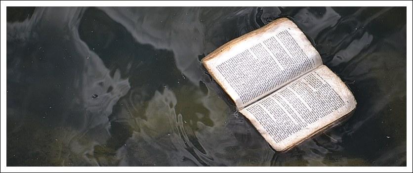 Das Foto zeigt ein im Wasser treibendes aufgeschlagenes Buch