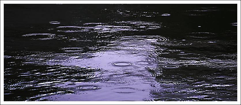 Das Bild zeigt Ringe von Regentropfen im Hafenbecken