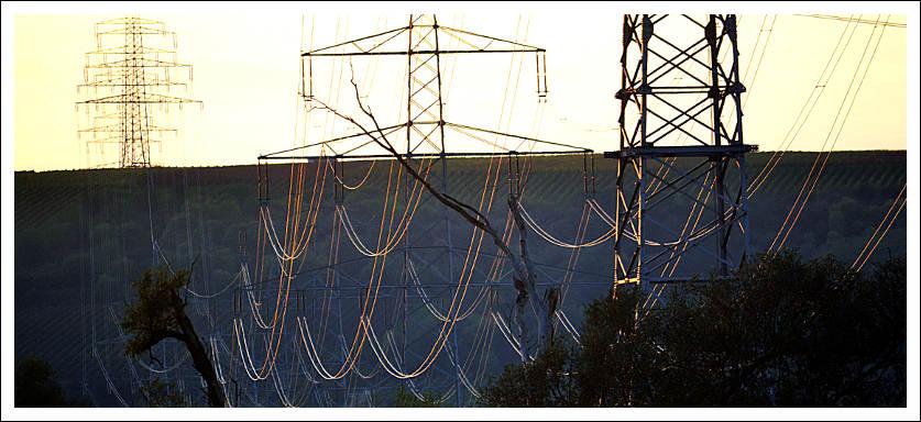 Das Bild zeigt eine elektrische Freileitung